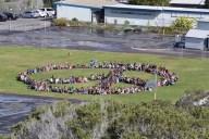 Sunset-View-Elementary-School