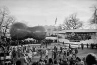 Carter Inauguration Peanut