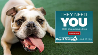 SD Humane Society Day of Giving 2019