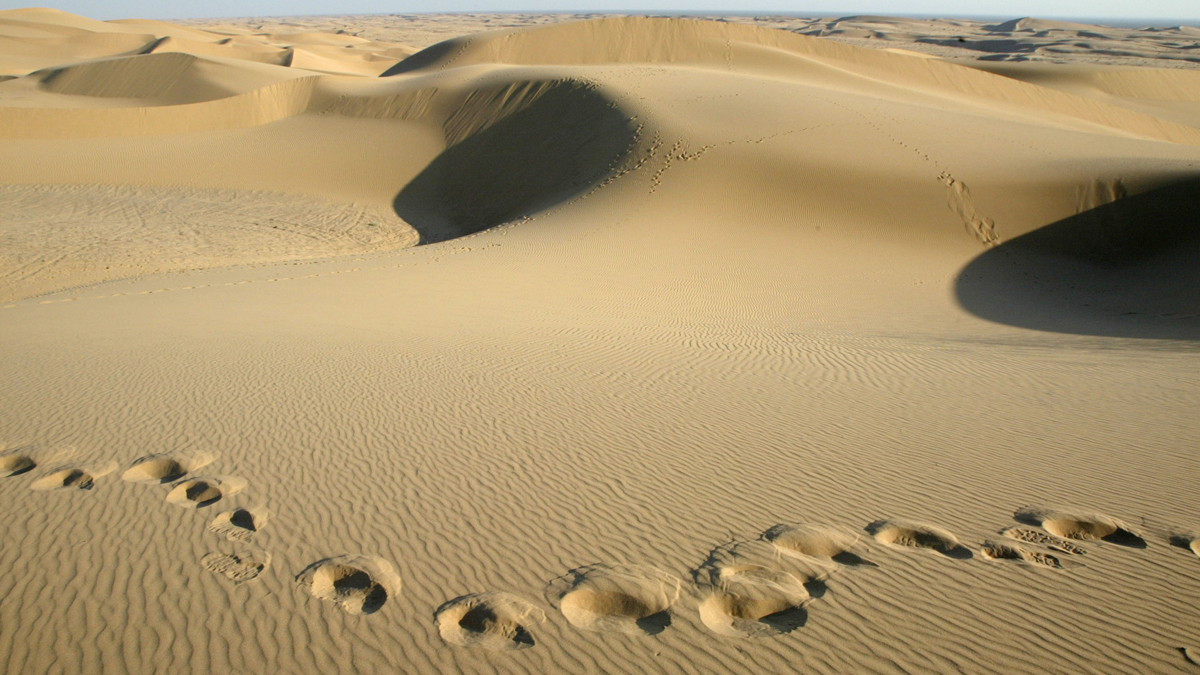 This file photo shows the Algodones Dunes near Glamis, California.