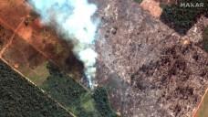 Global Worry Over Amazon Rainforest Fires Escalates