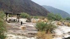 Father, Son Stranded Overnight on Borrego Desert Trail: SDSO