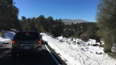 What You Need to Know Before Driving to the Snow