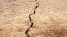 Southern California Tickled by Tiny Tremors Every 3 Minutes