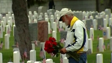 6,500 Roses Distributed at Rosecrans National Cemetery