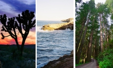 #OptOutside at These National Parks in California