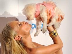 Celebrity Pets: Kristin Chenoweth's Puppy