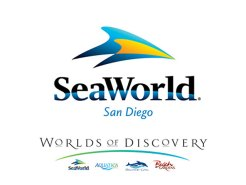 A Look Into Sea World's Conservation Efforts