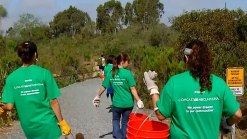 Weekend Events: Comcast Cares Cleanup, MS Walk