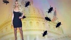 DeMaio Compares Congress to Cockroaches, Lindsay Lohan