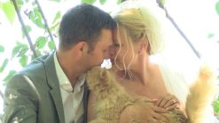 Canadian Couple Weds at a No-Kill Cat Sanctuary in California