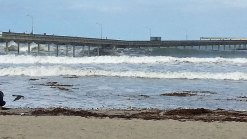 Junior Lifeguards to Celebrate 50th Anniversary of OB Pier on Saturday