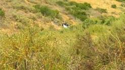 Body Found in Wreckage in Poway Ravine