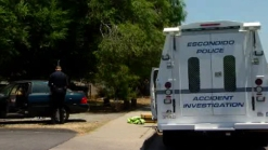 Toddler Struck by Car in Driveway