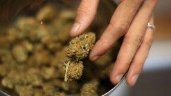 Politically Speaking: Medical Marijuana