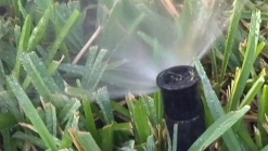 Water Restrictions May Lessen in San Diego