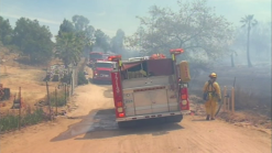 Residents Alarmed by Valley Center Brush Fire