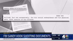 FBI Posts Sandy Hook Shooting Investigation Docs Online
