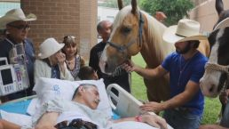 Dying Vet Reunites With Beloved Horses