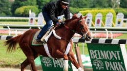 Measuring the Payoffs of a Triple Crown