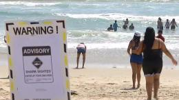 Shark Sighting Prompts Advisory at Silver Strand State Beach