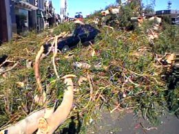 Damaging Winds Sweep County