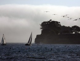 Worth the Drive: Santa Barbara Sea Festival