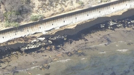 Ruptured Pipeline in Calif. Oil Spill to Be Removed, Investigated