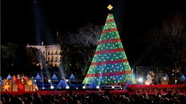 Reese Witherspoon to Host Nat'l Christmas Tree Lighting