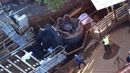 Fla. Theme Park Shuts Down Ride After Australian Accident