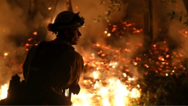 NorCal Under Siege in State's Deadliest Week of Fires