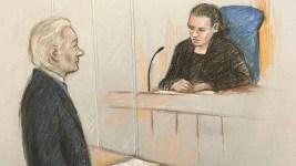 Wikileaks Founder Julian Assange Loses Bid to Delay Hearing