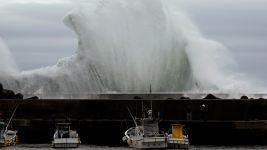 Typhoon May Bring 2 Feet of Rain, Strong Winds to Tokyo Area