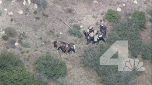 3 Deputies to Be Charged in SoCal Horseback Pursuit Takedown