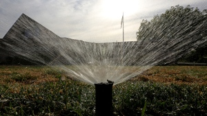 New Rules: 2 Days to Water Lawns