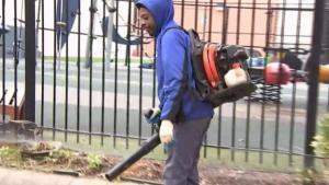 Gas-Powered Leaf Blower Ban Considered in Encinitas