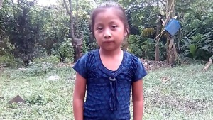 Girl Who Died at Border Waited 90 Minutes for Medical Care