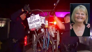 'Heart and Soul' of Mission Beach Killed in Hit-and-Run