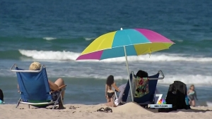 New Report Finds San Diego Tourism Slowing Down