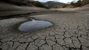 Calif. Drought Linked to Human-Caused Warming: Study