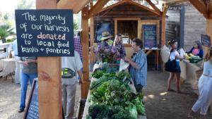 New Farm Stand Brings Produce to Those in Need