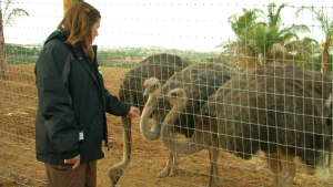 Children's Nature Retreat Offers Up-Close Animal Experience