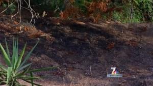 Man Accused in Bonita Fires