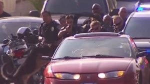 Documented Use of Force at SDPD Increasing Data Shows