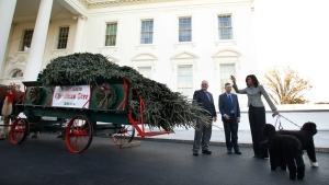 First Lady Receives 2015 WH Christmas Tree