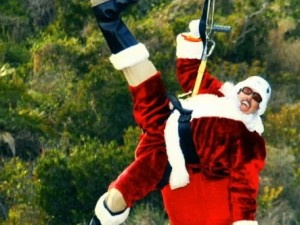 Look Who's Riding the Catalina Zip Line
