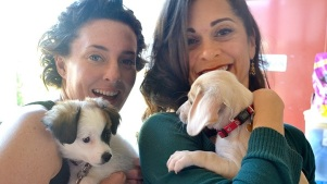 Puppy Prom: Rescue Dogs Party in Rancho Santa Fe