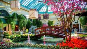 Springtime Indoors: Bellagio Garden Abloom