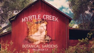 Myrtle Creek: Fairies + Princesses Rule