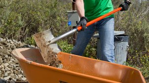 California State Parks: Earth Day Volunteering